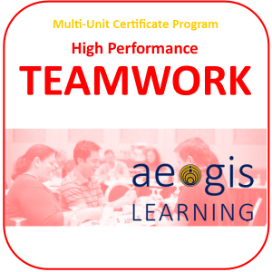 High Performance Teamwork Training