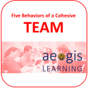 5 Behaviors of a Cohesive Team Training