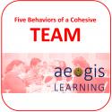 5 Behaviors of a Cohesive Team Training