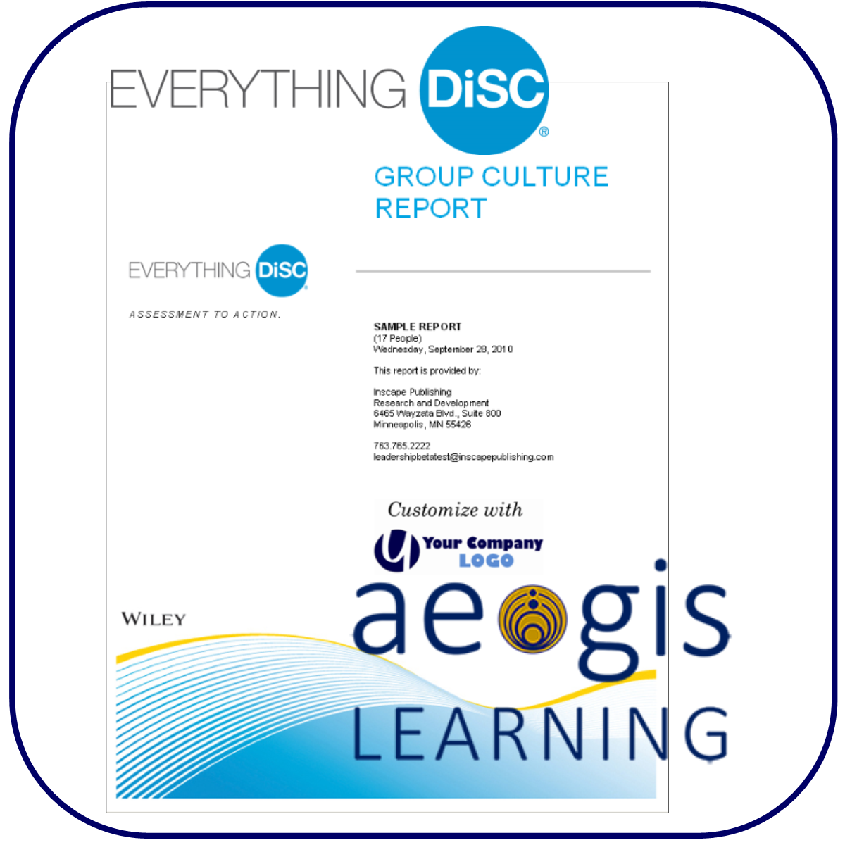 DiSC Group Culture Report