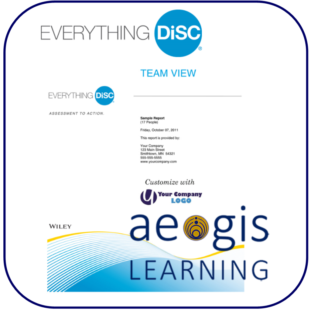 DiSC Team View Report