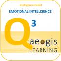 Aegis Learning adds IMPACT to emotional intelligence learning.