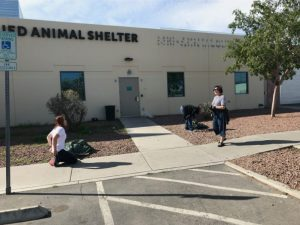 Aegis Cares works with the Animal Foundation