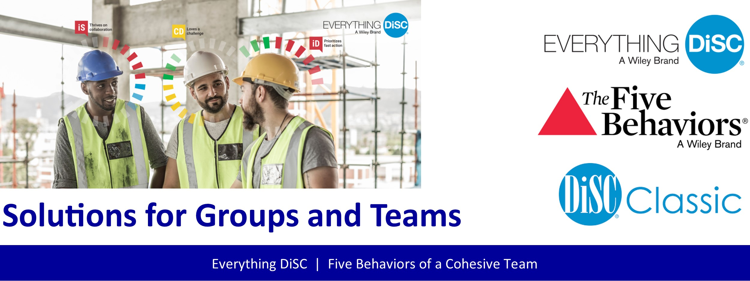 Everything DiSC Solutions for Teams and Groups